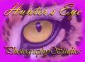 Hunter's Eye Main Logo