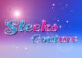 Sleeks Couture LoGo